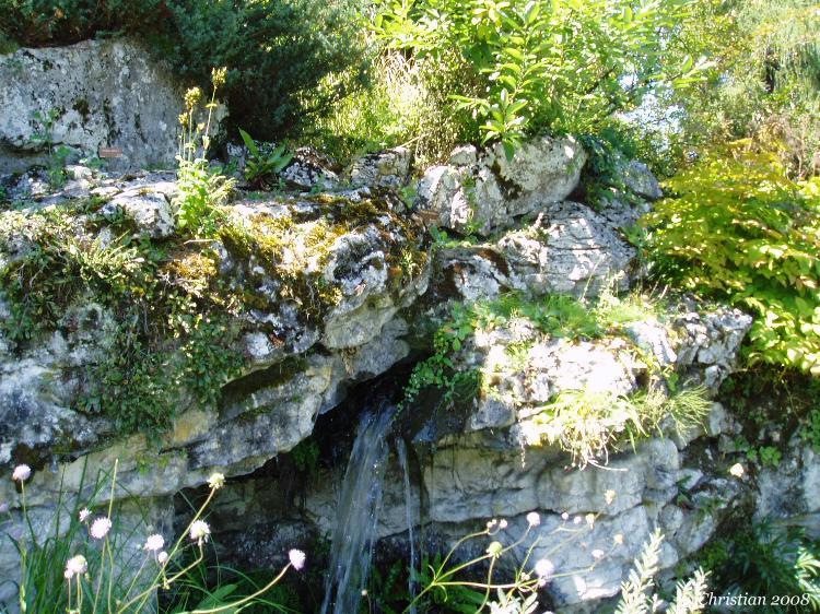 jardin botanique au mois daot genve - Jardin Botanique Geneve