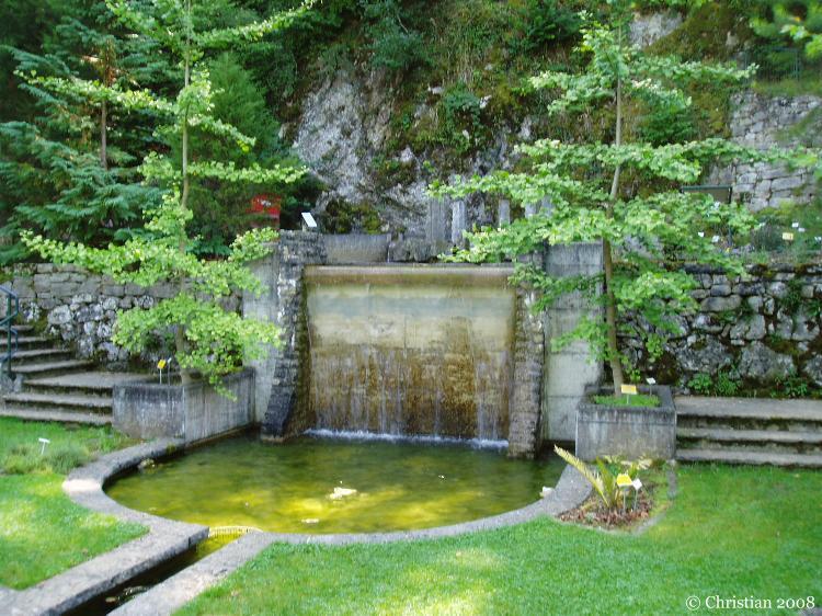 Jardin botanique neuch tel au mois d 39 ao t - Jardin anglais neuchatel dijon ...